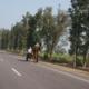 WayJaipur
